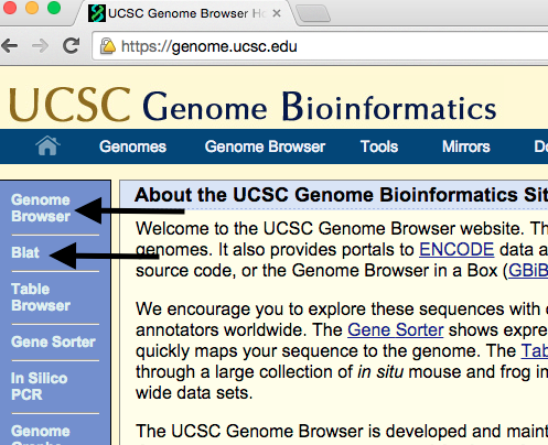 genome-browser-walkthrough-1