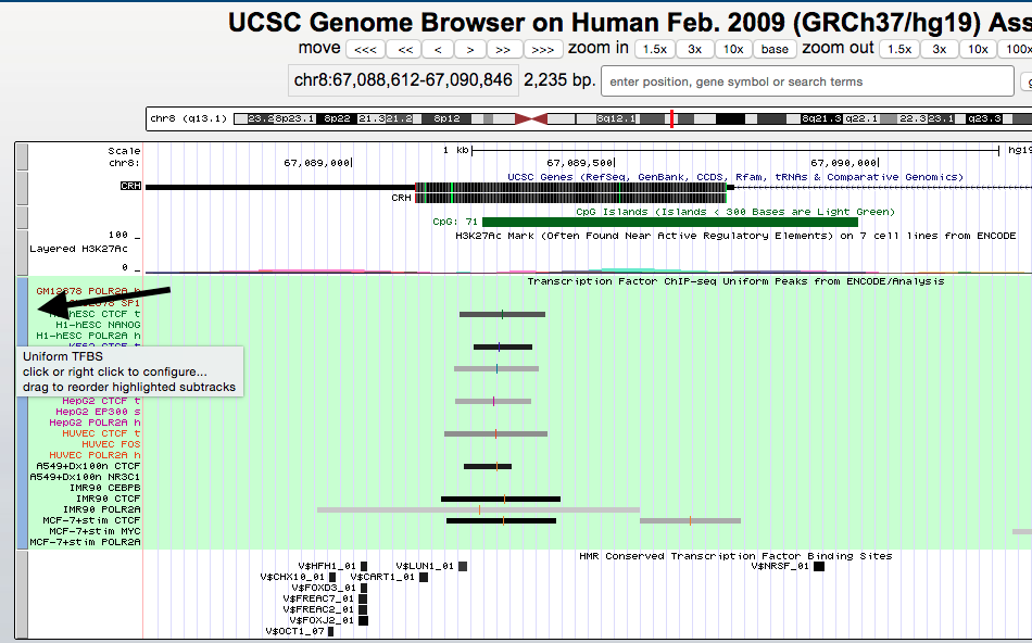 genome-browser-walkthrough-10-e1446756025948