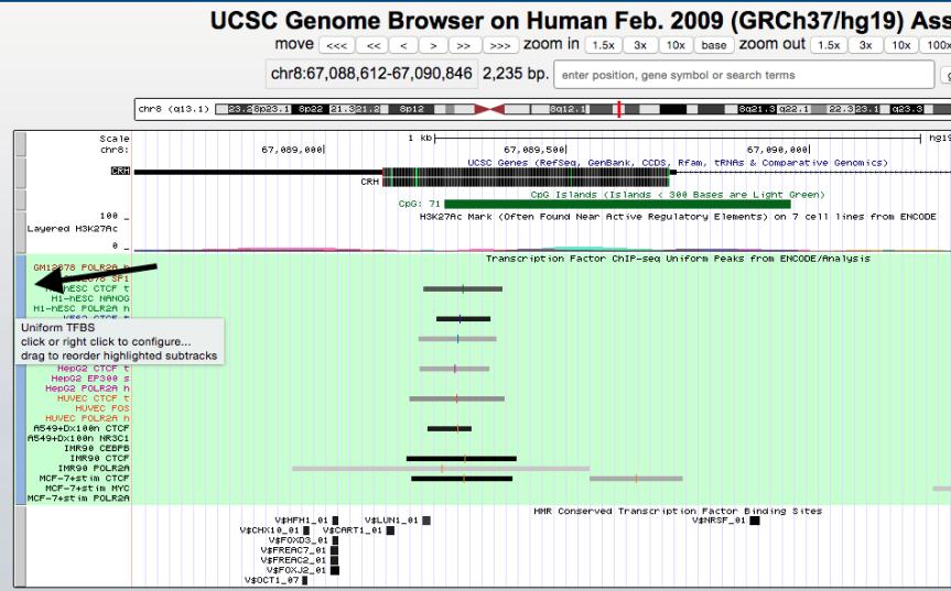 genome-browser-walkthrough-10-e1446756025948