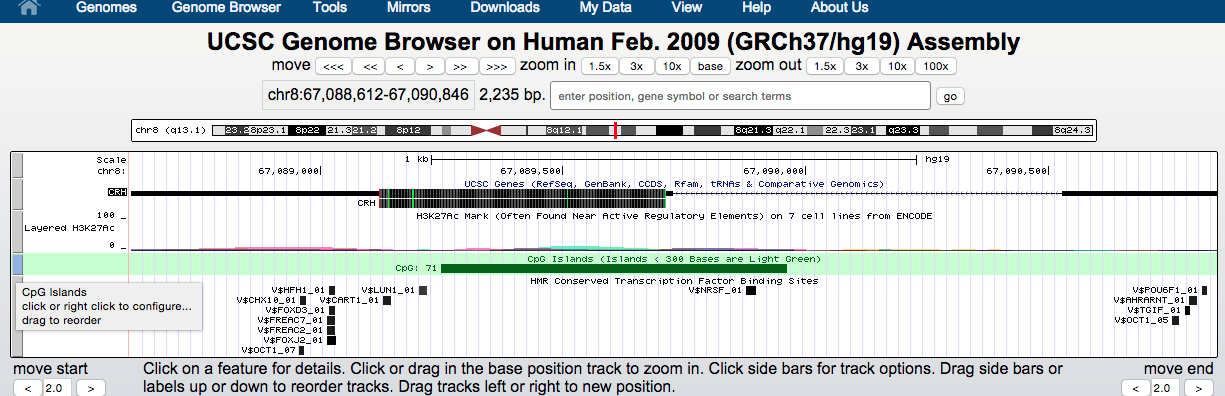 genome-browser-walkthrough-14