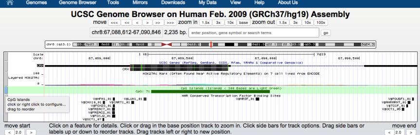genome-browser-walkthrough-14