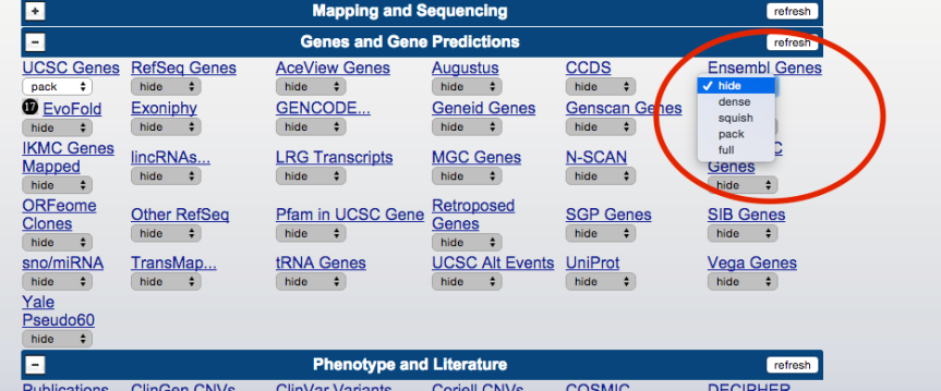 genome-browser-walkthrough-16