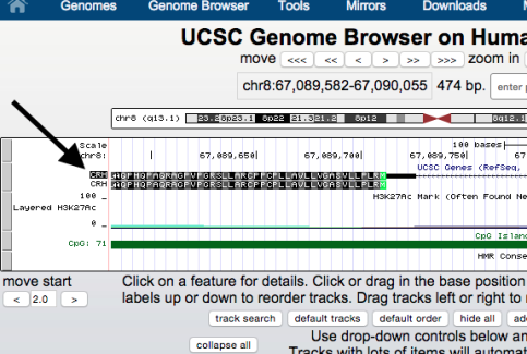 genome-browser-walkthrough-17-e1446756267770