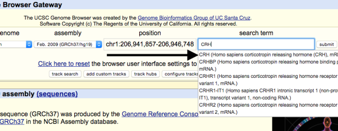 genome-browser-walkthrough-5-e1446755801643