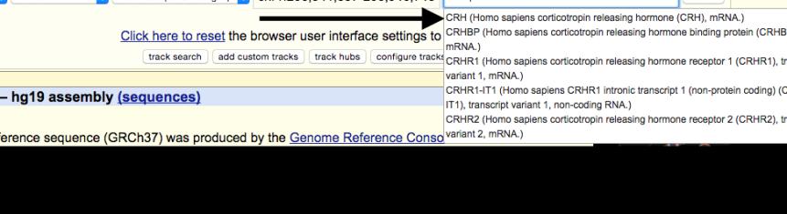 genome-browser-walkthrough-5