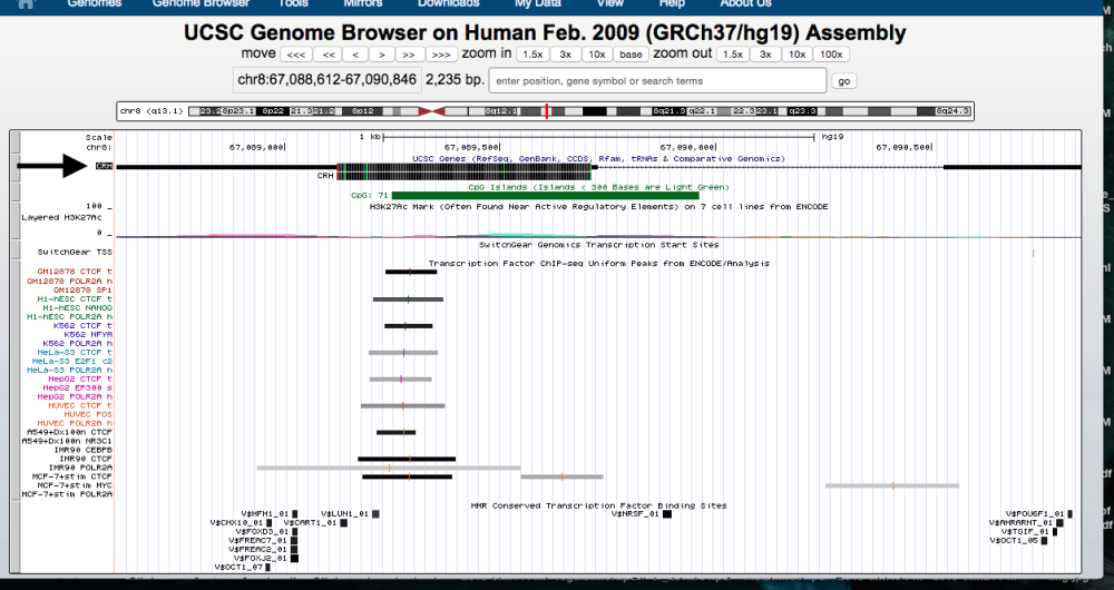 genome-browser-walkthrough-6-e1446756848206