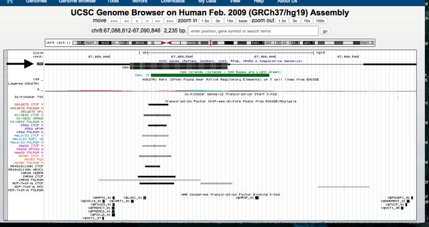 genome-browser-walkthrough-6-e1446756848206