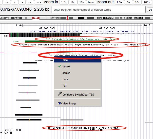 genome-browser-walkthrough-9-e1446755706100