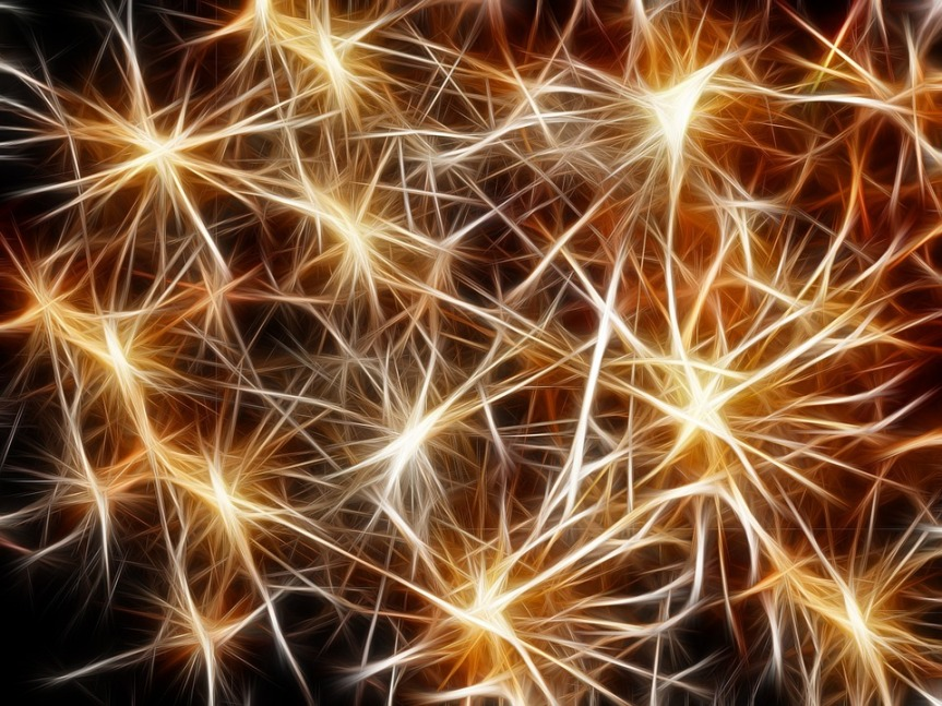 The Story of Adult Human Neurogenesis or: How I learned to Stop Worrying and Love TheBomb